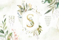 Serenity. Watercolor Floral Kit by OctopusArtis on @creativemarket