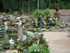 Beautiful plants and unique garden art really make this Water Garden special.