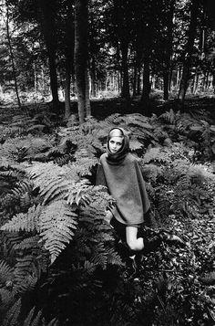 Twiggy, 1964 | Jeanloup Sieff