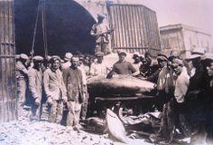 Pescatori di Tonni- Milazzo- Sicilia (1930)