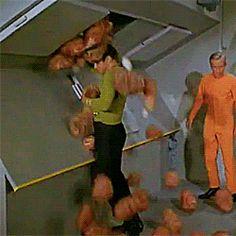 my gifs star trek william shatner James T. Kirk tribbles the ...
