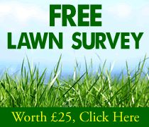 Want the perfect lawn? Get in touch with Lawn Care Wales, it's amazing what results they achieve