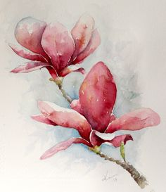 Watercolor: Magnolia Material: Arches Fine 140lb natural white paper Winsor & Newton Artist's Watercolors (Professional) and Daniel Smith Extra Fine Watercolors Size: 28x 31 cm – 10.1 x 12.2 inches I use watercolors from @DanielSmith and @winsorandnewton and 140 lb paper from Arches (Natural white grain fine) Click Here To Read My Guest Feature On Doodlewash!