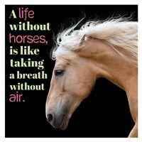 Horse Quote 7 Fine-Art Print