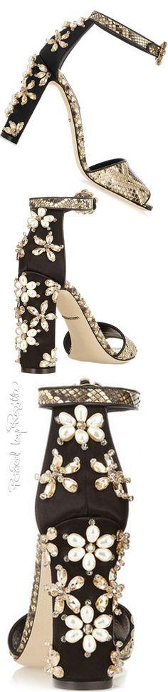 Dolce & Gabbana | House of Beccaria~