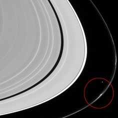 This view looks toward the sunlit side of the rings from about 12 degrees above the ring plane. The image was taken in visible light with the Cassini spacecraft narrow-angle camera. The view was obtained at a distance of approximately 1.4 million miles (2.3 million km) from Saturn and at a Sun-Saturn-spacecraft or phase angle of 105 degrees. Image scale is 9 miles (14 km) per pixel. Thickened parts of F ring circled