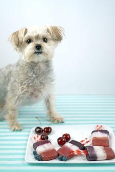 Healthy dog friendly bomb pop fruit popsicle recipe | Minnie in Manhattan