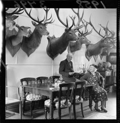 Hunting trophies in V E Donald's dining room / Alexander Turnbull Library