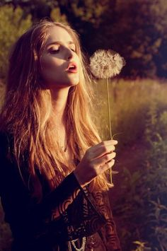 Wishes made on dandelions...