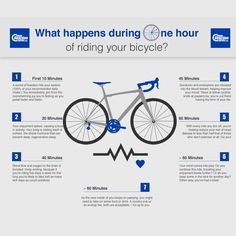 Ever wondered what effect cycling has on your body during the first hour of turning the pedals? Check out our graphic to see how awesome it is!