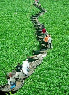 Boat bridge, Dhaka, Bangladesh