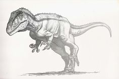 Draw Dinovember Day 18 Charcharodontosaurus by daitengu on DeviantArt