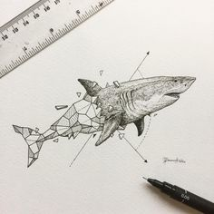 "3,981 Likes, 19 Comments - K E R B Y R O S A N E S (@kerbyrosanes) on Instagram: ""Spending the day reading and answering as many emails as I could. Here's a photo of the shark from…"""