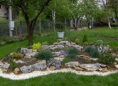 Steingärten Sind Attraktive Hingucker Im Vorhof Oder Im Garden. Wer Einen Steingarten  Anlegen Möchte Und Die Passenden Pflanzen Sucht, Ist Hier Richtig.