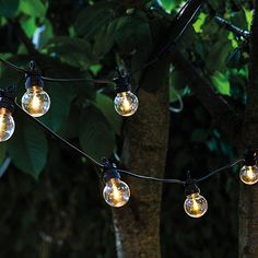 Sirius lyskæde - Lucas startsæt - Klar 3 meter sort ledning - 10 LED-pærer