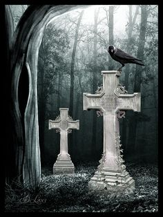 Credits / Stocks: Model by [link] Thx Wolf by [link] Thx Fog Brushes by [link] Thx BG by [link] Adobe Photoshop . Gothic Art, Gothic Girls, Old Cemeteries, Graveyards, Halloween Graveyard, Raven Tattoo, Crows Ravens, Photoshop Cs5, Bird Pictures