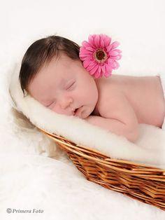 Primera Foto > Galerías > Fotos de bebés