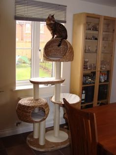 Banana leaf 103 x 58 x 158 cm cat tree. Love the condos and hammocks included to make this a great cat window perch hangout! #cats #CatTree #BananaLeaf