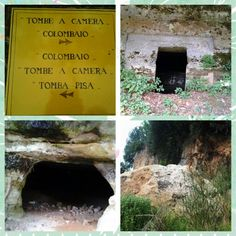 Smaller tombs and pisa has lots of underground chambers #maremma #tuscany