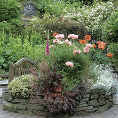 Raised bed of oriental poppies, Papaver orientale 'Mrs Perry' & 'Midnight', mixed w/ heuchera & a stray foxglove. -- in a Llangollen, North Wales garden