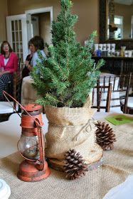 "Sunday Sisters: ""Set Up Camp"": Camping Shower. Key details: pinecones! Also, love the use of the artificial trees. The burlap is cute, too."