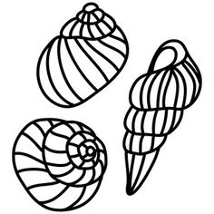 Nautilus Shell Outline clip art for large design on wall