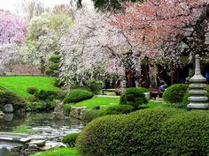 cherry everything | 2012 Subaru Cherry Blossom Festival of Greater Philadelphia ...