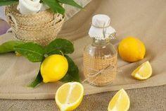 Nous savons que les citronniers poussent à l'air libre pendant toute l'année, surtout dans les régions où le climat est chaud et ensoleillée la plupart du temps.