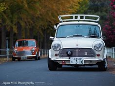 66 Awesome Mini Images In 2019 Classic Mini Mini Coopers Antique