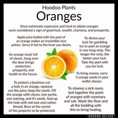 ~*~ HOODOO PLANTS: ORANGES ~*~ Once expensive an exotic, oranges have always symbolized joy, celebration, success, and wealth. Hoodoo Spells, Magick Spells, Candle Spells, Healing Spells, Healing Herbs, Natural Healing, Luck Spells, Money Spells, Witch Herbs