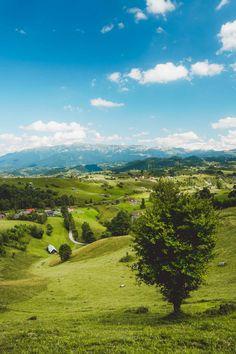 Smell Of Rain, Romania Travel, Carpathian Mountains, Black Sea, Love People, Summer Days, Blog, Beautiful, Self