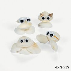 Seashell Creatures
