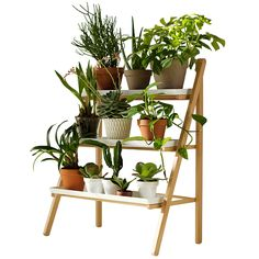 Ruukkuporras. A ladder for the herbs and plants on the balcony. Finnish Design Shop.