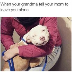 Pin for Later: 12 Times F*ckJerry Was the Most Relatable Instagram Account Ever  Shoutout to all the grandmothers who've saved us from a grounding.