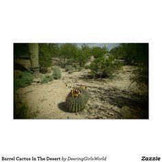 Barrel Cactus In The Desert Poster