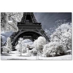 Trademark Fine Art Another Look at Paris Viii Canvas Art by Philippe Hugonnard, Size: 12 x 19, White