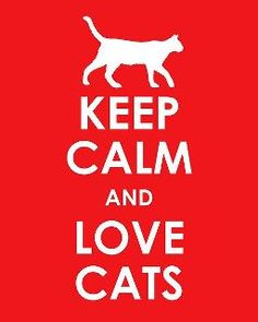 I may not always keep calm, but I do love cats :)