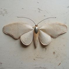 Soft sculpture of a moth made from tablecloth by MisterFinch