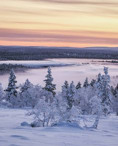 """2,480 tykkäystä, 13 kommenttia - Visit Lapland (@visitlapland) Instagramissa: """"~ Winter time started from today and so as snowy landscapes in Lapland. Welcome winter days ~ ❄❄…"""" Welcome Winter, Winter Time, Winter Wonderland, Snow, Mountains, Sunset, Landscapes, Travel, Outdoor"""
