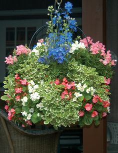 How to grow fuller hanging baskets.  Slits in side of coconut liner, add plants to sides through slits.