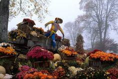 Smoky Mountain Harvest Festival