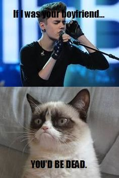 Grumpy cat, grumpy cat meme, grumpy cat humor, grumpy cat quotes, grumpy cat funny …For the best humour and hilarious jokes visit www.bestfunnyjokes4u.com