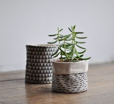 SM ROUND STORAGE - rain--just the on-trend item i've been looking for to cover ugly plastic pots. Growing Succulents, Planting Flowers, Potted Plants, Indoor Plants, Indoor Succulents, Succulent Containers, Quebec, Bio Design, Plant Bags