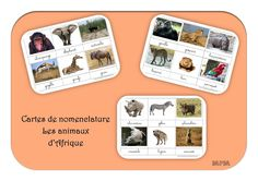 Cartes de nomenclature - Animaux d'Afrique Web Animal, Busy Bags, African Animals, Preschool Learning, Continents, Savannah Chat, Montessori, Elephant, Map