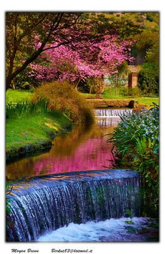 Garden of Ninfa,  Cisterna di Latina, central Italy