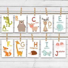 Animal alphabet card set  Alphabet flash par Anietillustration