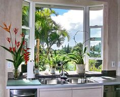 garden window over sink
