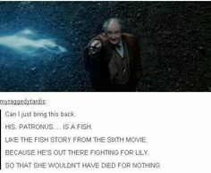 sorry that is a lovely thought but he isnt performing a patronus charm he is protecting hogwarts with protego maxima Harry Potter Love, Harry Potter Universal, Harry Potter Fandom, Harry Potter Memes, The Nerd, Movies Quotes, Fangirl, Maxon Schreave, No Muggles