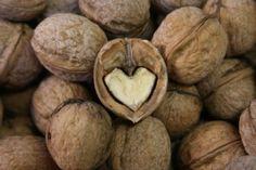 walnut heart shaped on inside I Love Heart, My Heart, Heart Art, Heart Shaped Rocks, Heart In Nature, Weird Food, Follow Your Heart, Love Symbols, Belleza Natural