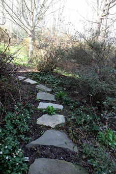 flat stone walkways